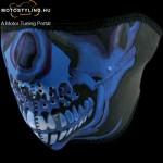 Blue Chrome Skull kép